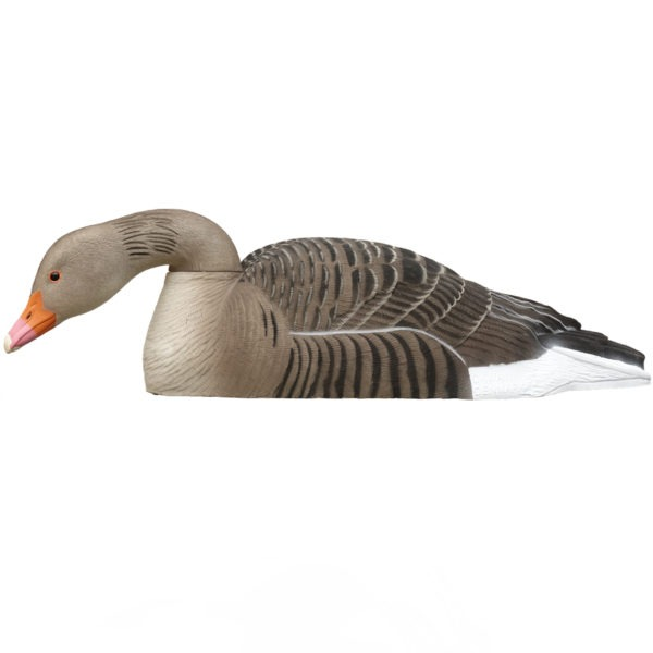 greylag decoy shells feeder