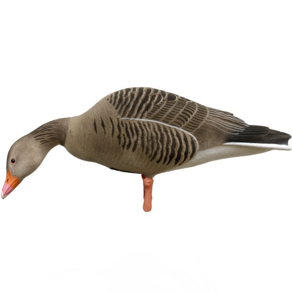 greylag full body feeder
